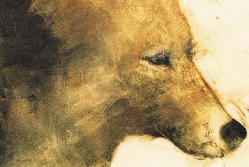 Old Coyote by Nancy Wood