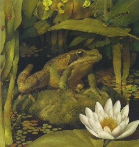 Frog Song-Canadian Wood Frog