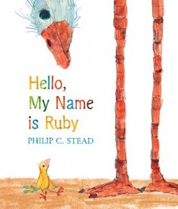 Hello My Name is Ruby cover
