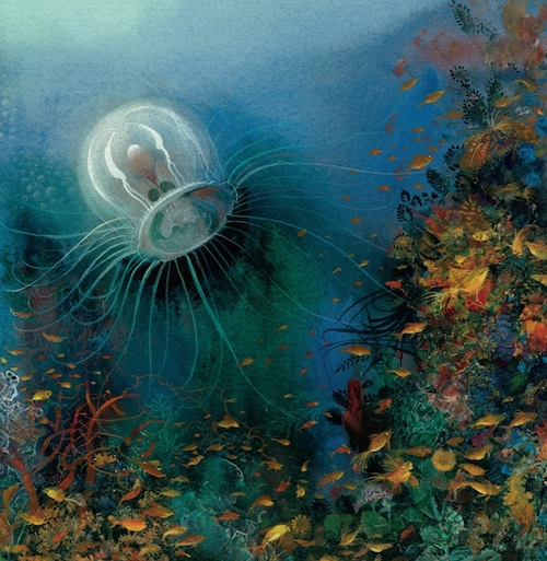 Most Amazing: The Most Amazing Creature In The Sea